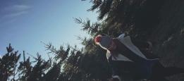 Tree Dreamin'